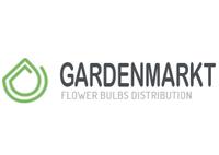 Lilienzwiebeln von Gardenmarkt.de
